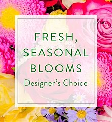 Flower Bouquets: Designer's Choice Seasonal Bouquet: Colorful Mix